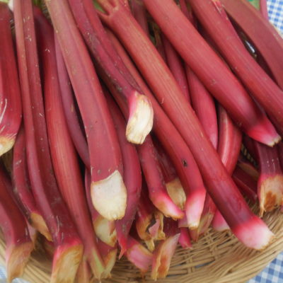 Rhubarb Roundup