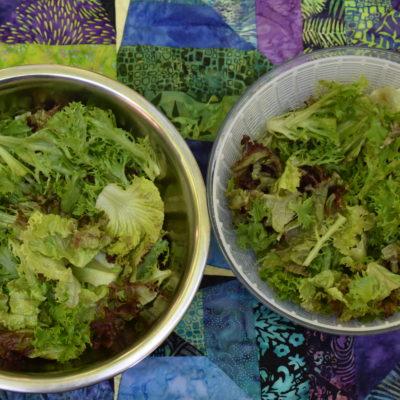 Salad Making Guidelines